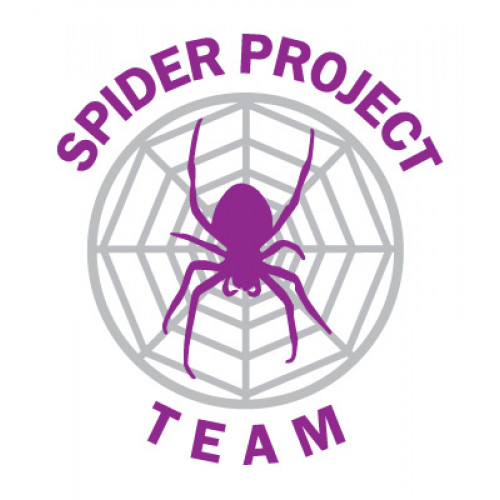 Spider Project Professional